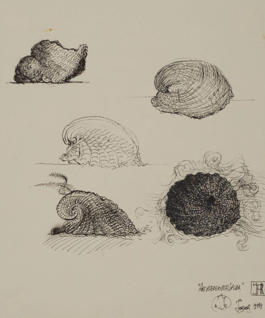 Archeogastrópoda